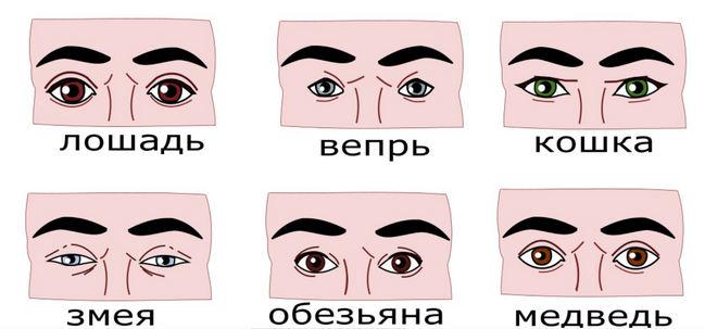глаза 2