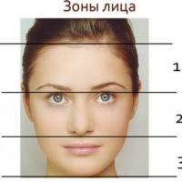 Секреты физиогномики. Распознаем человека по форме лица